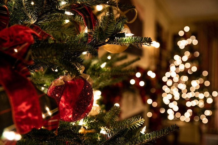 What is a Christmas tree and who invented it?